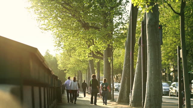 Paris Strollers
