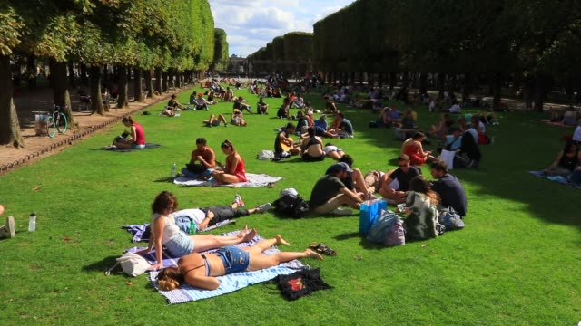 vidéos et rushes de parisians enjoy the jardin du luxembourg during the summer season on july 26, 2020 in paris, france. a heat wave is expected over the whole of france... - pelouse
