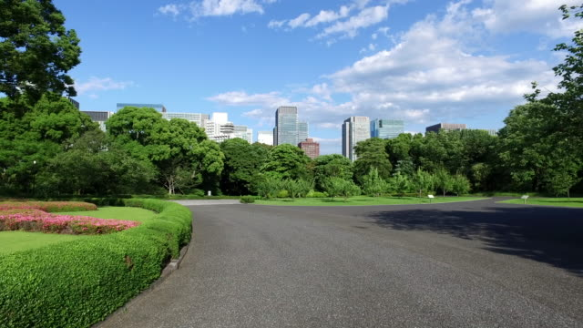 東京の公園エリア - 都市景観点の映像素材/bロール