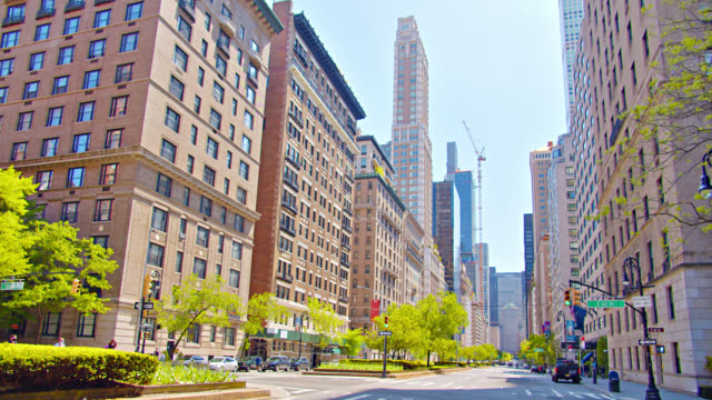 stockvideo's en b-roll-footage met park avenue financial district. bomen. aard. skyline. urban road. lege. - avenue