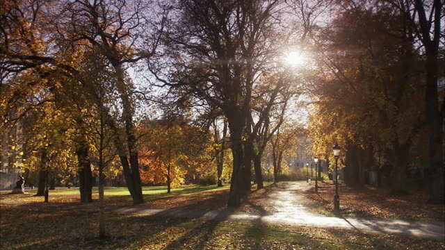 A park in the autumn Sweden.