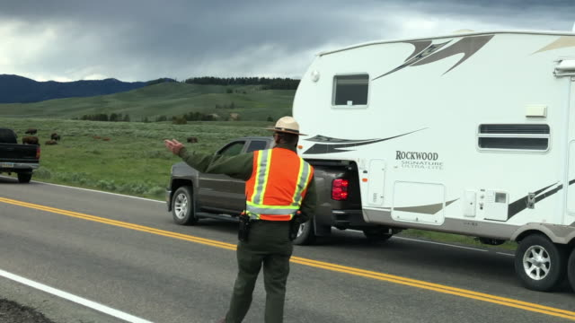 Park ranger directing traffic