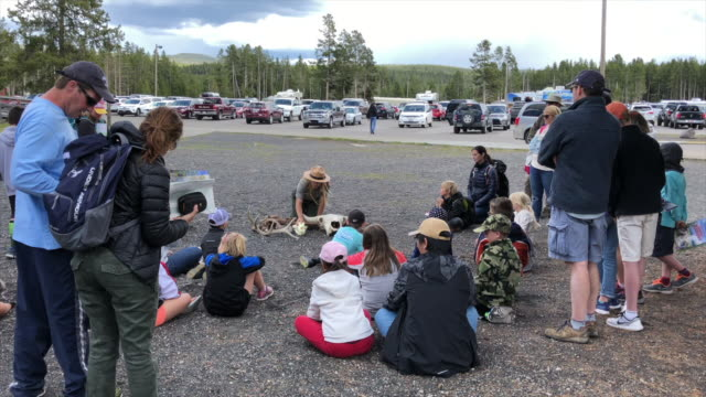park ranger give education to tourists at yellowstone national park - 公園保安官点の映像素材/bロール