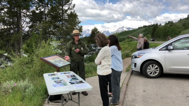 park ranger give education to tourists at yellowstone national park - wyoming stock-videos und b-roll-filmmaterial