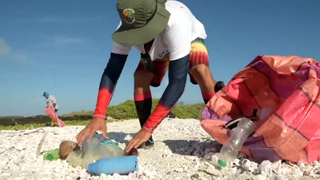 park rangers and volunteers collect garbage on the coast of the unpopulated isabela island as tons of plastic waste wash up on the shores of the... - endemic stock videos and b-roll footage
