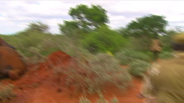 Park Rangers walking past dead elephants during a patrol for ivory poachers in Tsavo National Park in Kenya