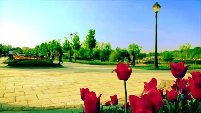 Scena del parco