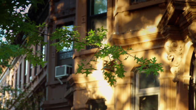 park slope row house - row house stock videos & royalty-free footage