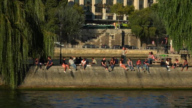 park square de vert-galant and seine river, paris, france, europe - trauerweide stock-videos und b-roll-filmmaterial