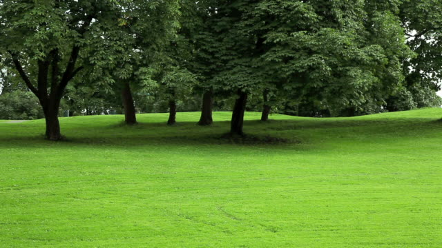 stockvideo's en b-roll-footage met park with green lawn. - stilstaande camera