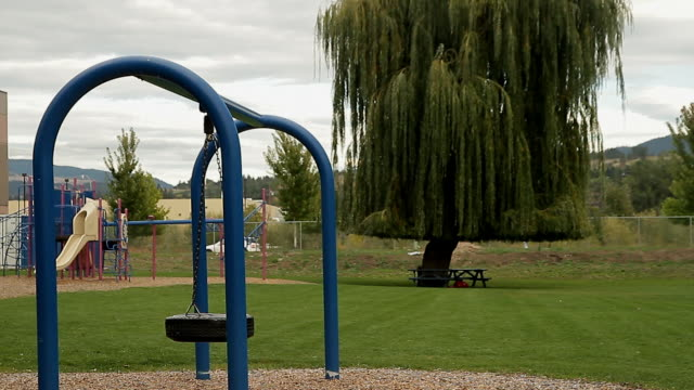 a park with play structures for children as a tire for a swing - tire swing stock videos & royalty-free footage