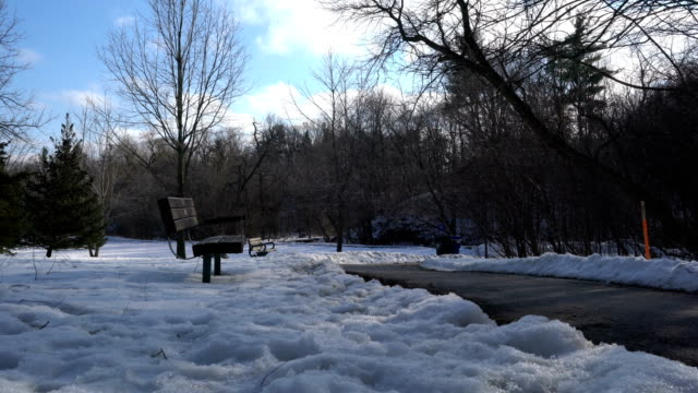 park wooden bench after snowstorm. - montréal stock videos & royalty-free footage