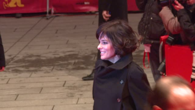 parker posey at the 59th berlin film festival: happy tears red carpet premiere at berlin . - parker posey stock videos & royalty-free footage