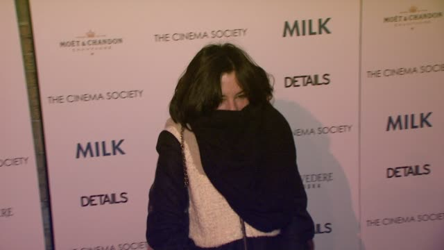 parker posey at the 'milk' premiere at new york ny. - parker posey stock videos & royalty-free footage
