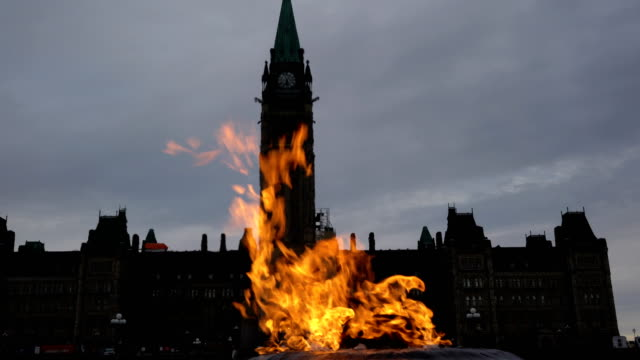 parliament hill - ottawa, ontario, canada - ontario canada stock videos & royalty-free footage