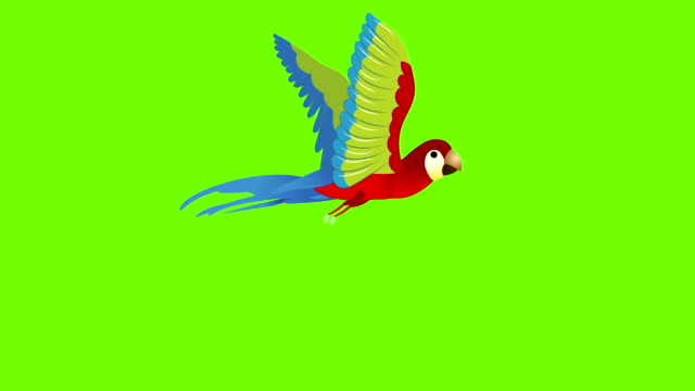 parrot  flying cycle animation - hovering stock videos & royalty-free footage