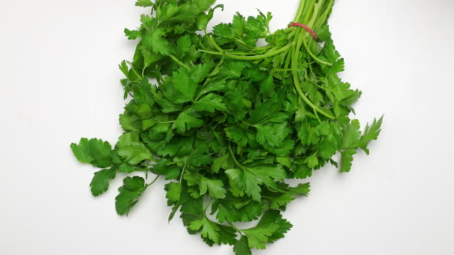 parsley. - parsley stock videos and b-roll footage
