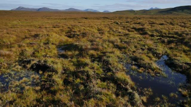part of the 800 acres of mostly peat bog on the a'mhoine peninsula in sutherland scotland uk which has been selected by orbex to build the uk's first... - rural scene stock videos & royalty-free footage