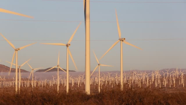 part of the Tehachapi Pass wind farm, the first large scale wind farm area developed in the US, California, USA, at sunrise.