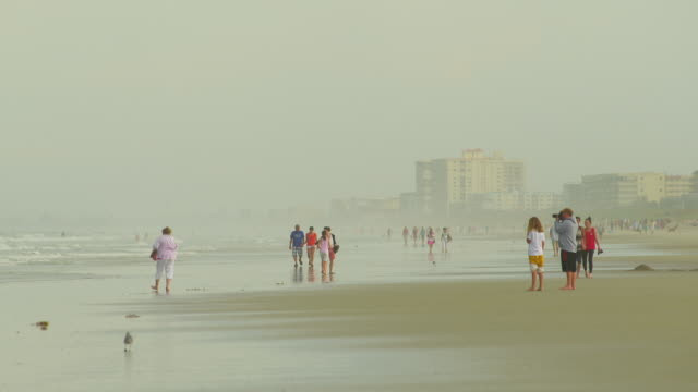 ws partially wet beach w/ unidentifiable people adult females preteen girl looking finding shells couples walking woman standing w/ man using video... - receding tide stock videos & royalty-free footage