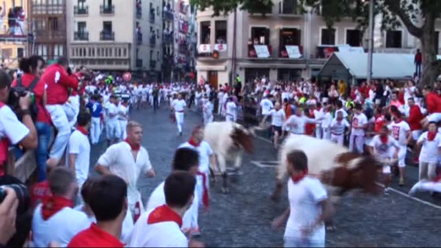 participants run with fighting bulls during the bullrun of the annual san fermin festival in pamplona spain on july 07 2016 the san fermin festival... - toro fish stock videos and b-roll footage