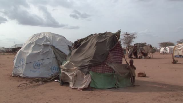 parts of the horn of africa have been hit by the worst drought in 60 years according to the un dadaab kenya - horn of africa stock videos and b-roll footage