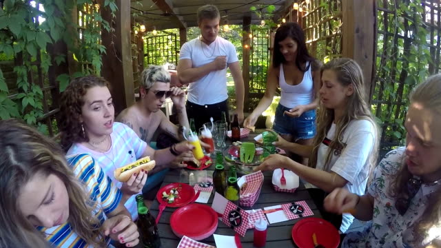 outdoor sommer junge erwachsene hotdog bbq party - patio stock-videos und b-roll-filmmaterial