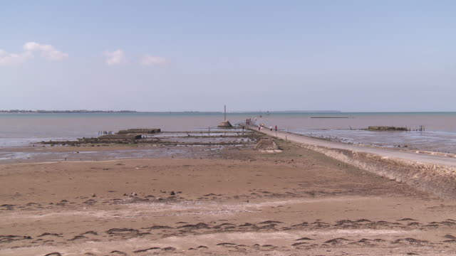 passage du gois  road submersible between french continent and noirmoutier islande low tide - ブルターニュ点の映像素材/bロール