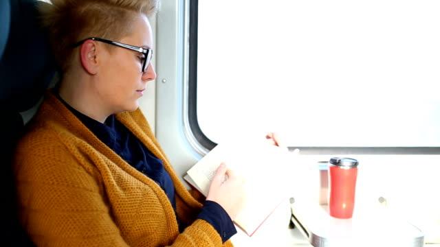 列車の乗客。旅費及び交通についての概念 - 席点の映像素材/bロール