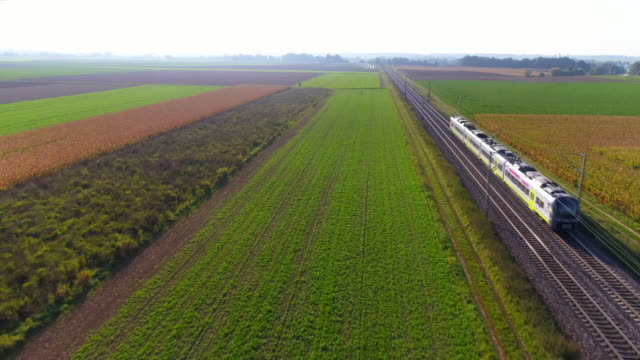 passenger train passing through countryside - moving past stock videos & royalty-free footage