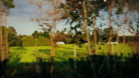 passenger view from a traveling bus - public transport stock videos & royalty-free footage