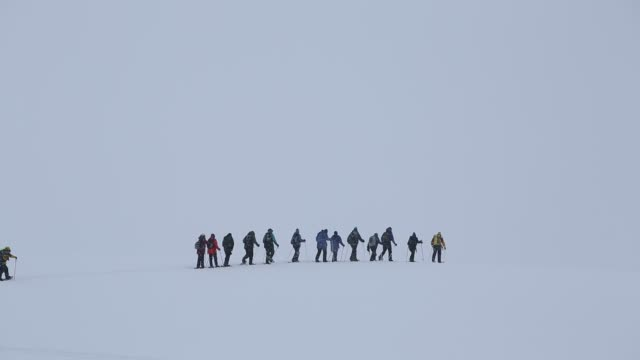 passengers from an antarctic cruise ship snow shoeing on portal point antarctic peninsular - cruise antarctica stock videos & royalty-free footage