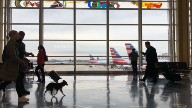 passengers move through ronald reagan national airport on the day before the thanksgiving holiday, november 27, 2019 in arlington, virginia. both the... - flughafen washington ronald reagan national stock-videos und b-roll-filmmaterial