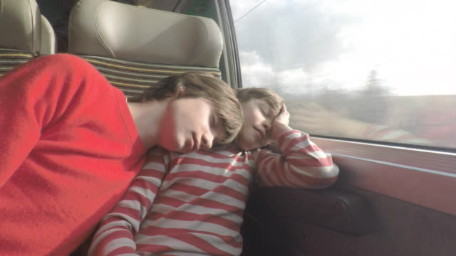 Passengers on a train, two brothers