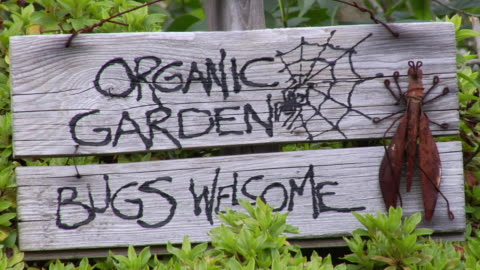 ms pan past bush to sign for organic garden with bug sculpture/ vancouver, bc - sculpture stock videos & royalty-free footage