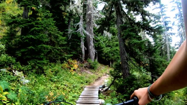 stockvideo's en b-roll-footage met pov langs vrouwelijke mountainbikers handen tot hoge alpine weide trail - gras
