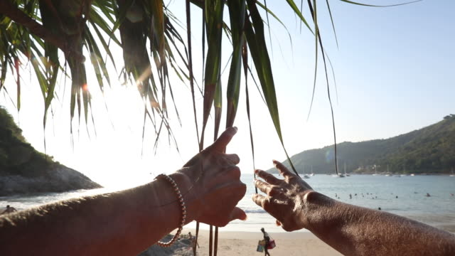pov past woman's arms pulling back palm fronds - bracelet stock videos and b-roll footage