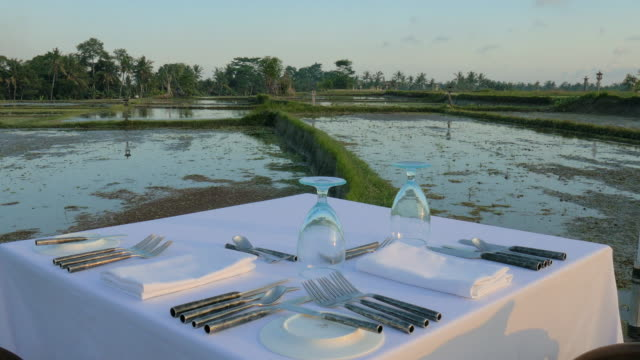 pastoral dining in ubud,bali,indonesia - napkin stock videos and b-roll footage