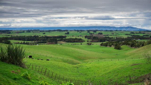 pastoral new zealand scene - time lapse - manawatu wanganui region stock videos & royalty-free footage