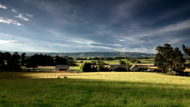 Pascolo di mucche nel cielo blu