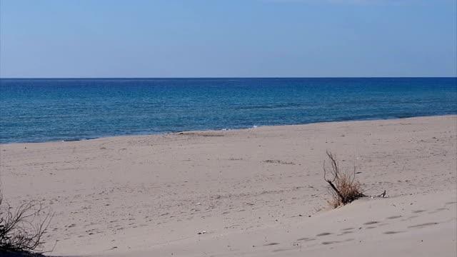 patara spiaggia. - archeologia video stock e b–roll