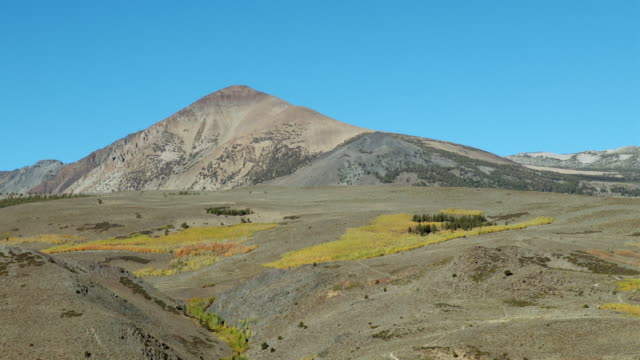 vidéos et rushes de patches of bright autumn color in the bodie hills, mono county, california. - dépression terrestre