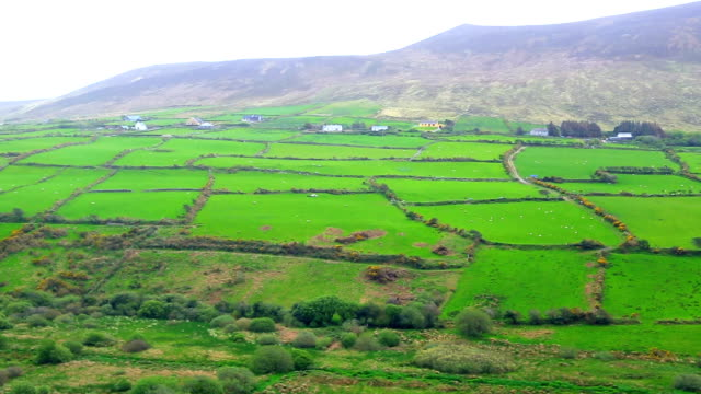 patchwork landscape of ireland - northern ireland stock videos & royalty-free footage