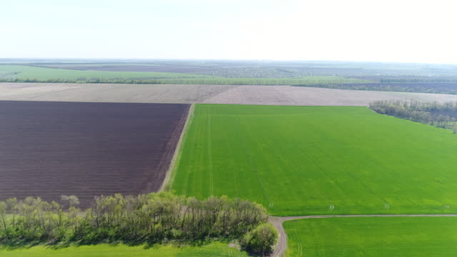 patchwork of colorful farmland - patchwork stock videos & royalty-free footage