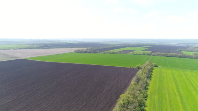 patchwork of farmlands with separate area under crops - patchwork stock videos & royalty-free footage