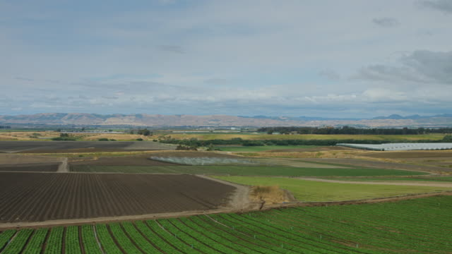Patchwork of Fields in California Central Valley