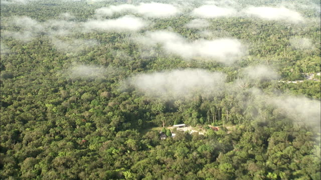 Patchy clouds hang above the Amazon Rainforest. Available in HD.