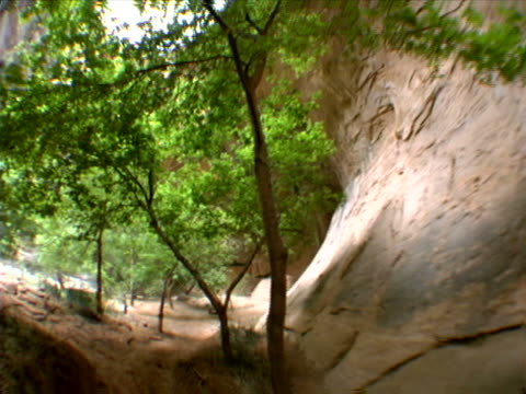 path and stream on canyon floor - rock strata stock videos & royalty-free footage