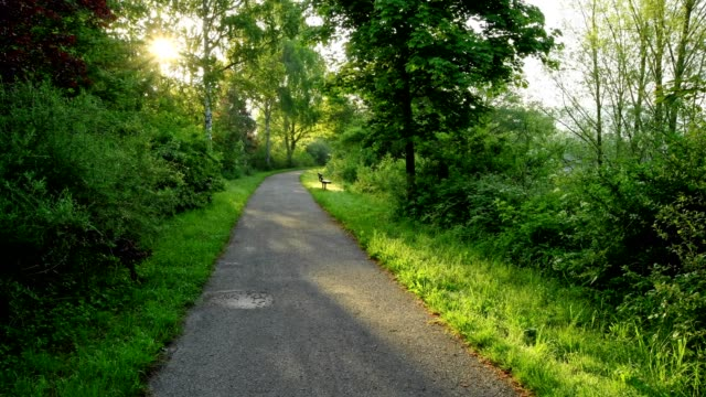 Path at sunrise in spring, Mondfeld, Baden-Wurttemberg, Germany