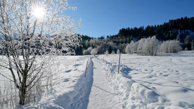 vídeos de stock, filmes e b-roll de path in winter landscape near lake barmsee with sun, krün, garmisch-partenkirchen upper bavaria, bavaria, germany, european alps - alta baviera